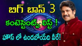 BIGG BOSS 3 Telugu Contestants List Finalised – Nritv