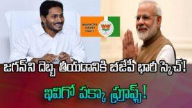 BJP Planning Against YSRCP Jagan Mohan Party – Nritv